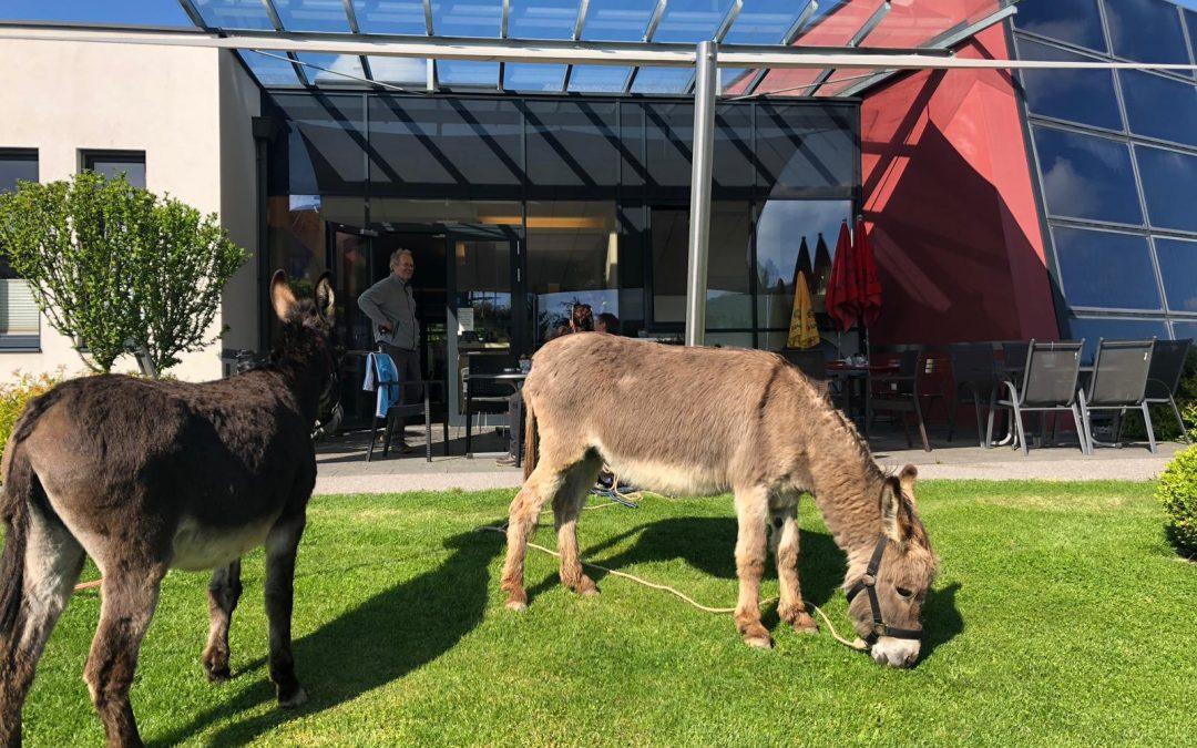Eselwanderung – Tag 03, Arabellas Eindrücke