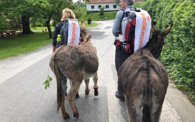 Eselwanderung – Tag 03